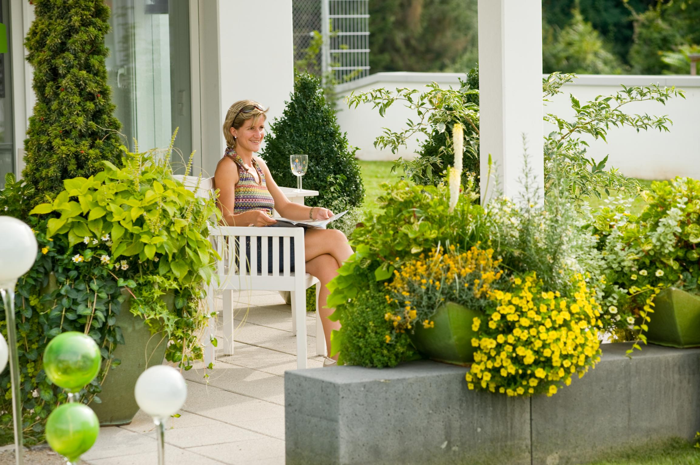 Sonnenkinder – die richtigen Pflanzen für vollsonnige Plätze