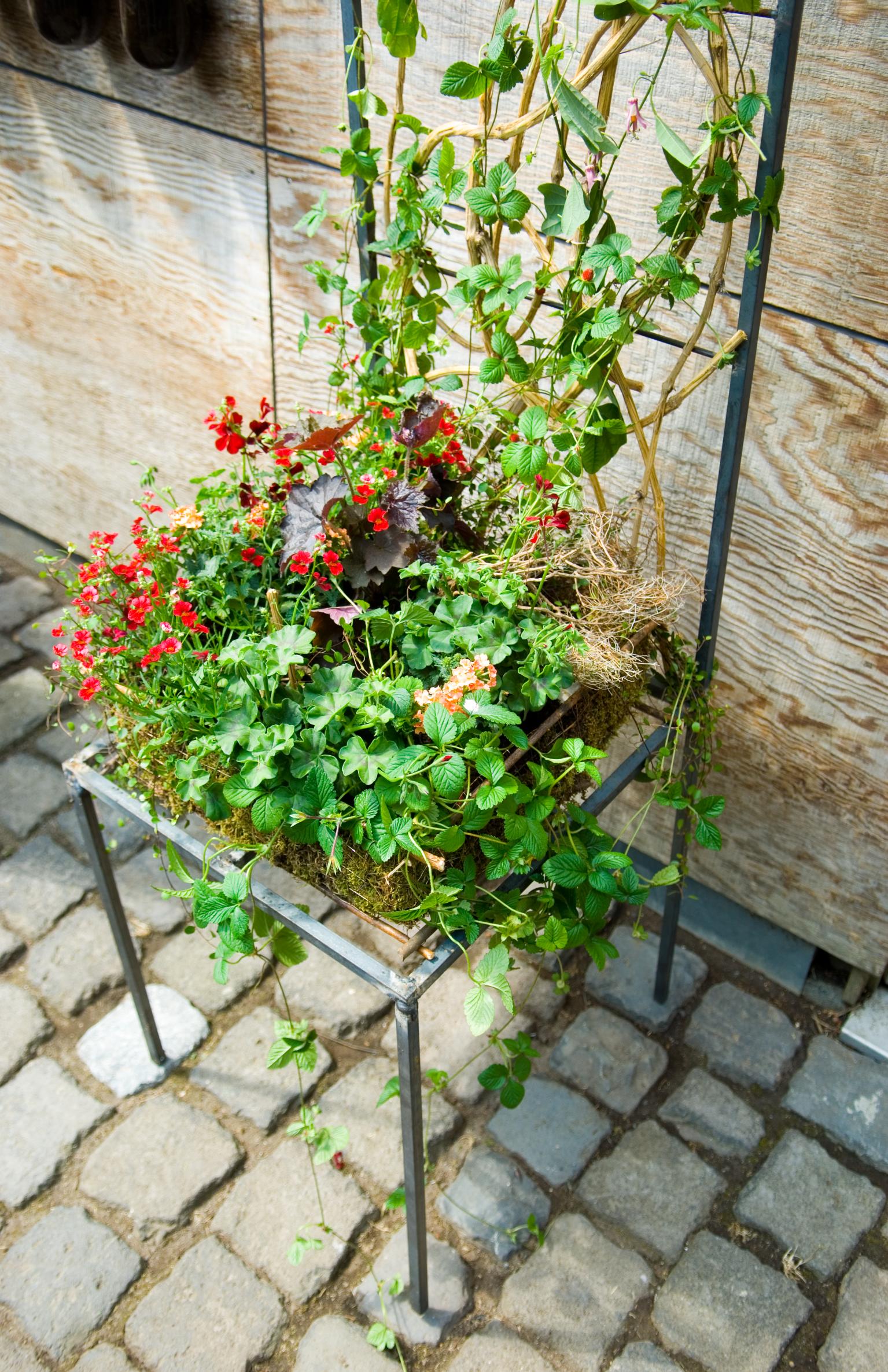 Blumendekos, die Geschichten erzählen