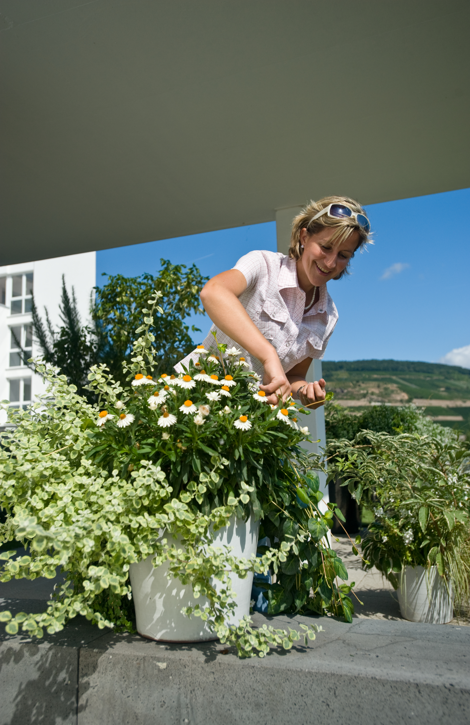 Sommerblumen-Pflege – das tägliche Stückchen Entspannung