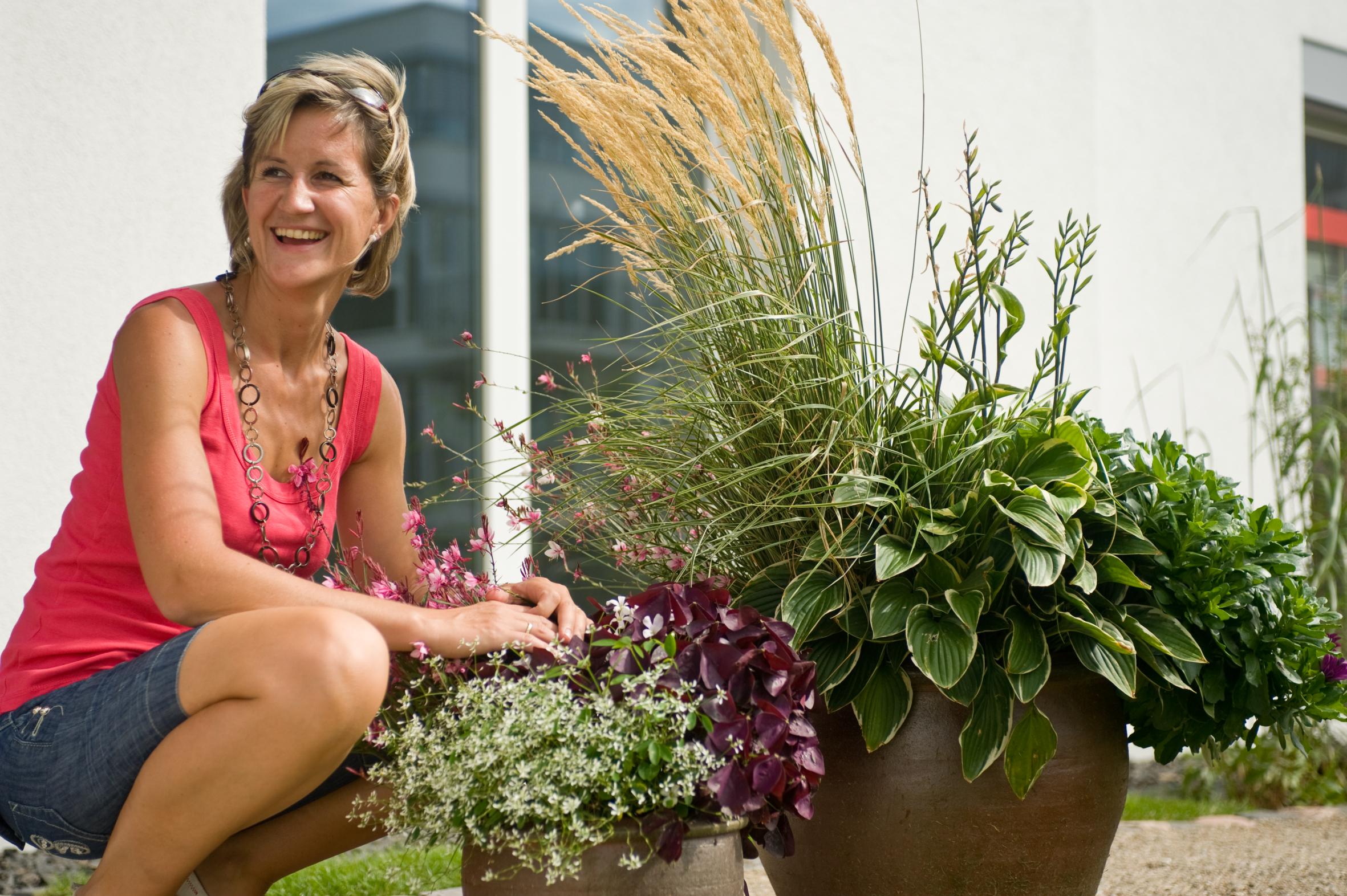 Blumenpflege Zur Urlaubszeit