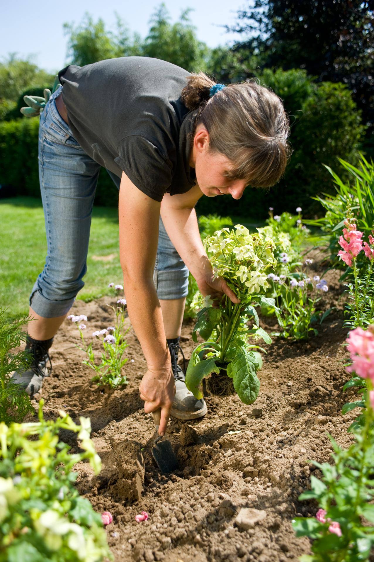 Gärtnern, das kreative und sinnliche Vergnügen