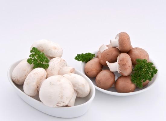 Pilze - unerschöpfliche Mineralstoffquelle