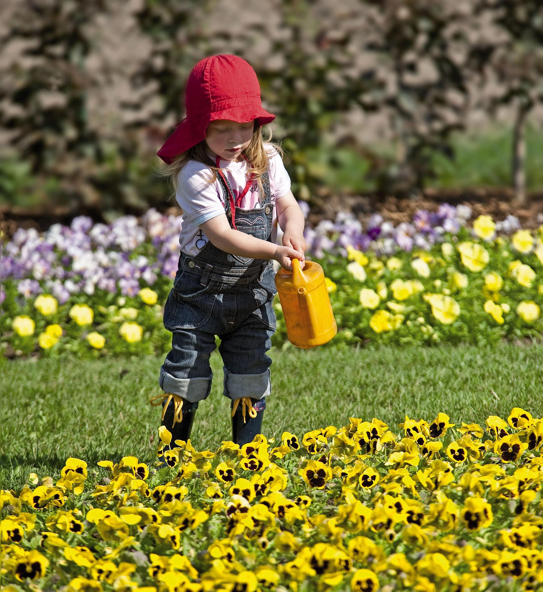 Berühmt Primeln & Co – Frühjahrsblüher bringen Farbe in den Garten - Das &UG_31