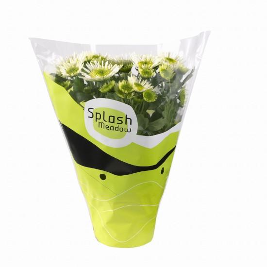 GMH_2011_10_05: Pünktlich zum Saisonstart locken die Pflanzenneuheiten 2011