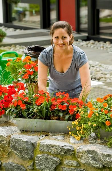 GMH_2011_12_02_Herzlich willkommen: Start in die Beet & Balkonpflanzen-Saison