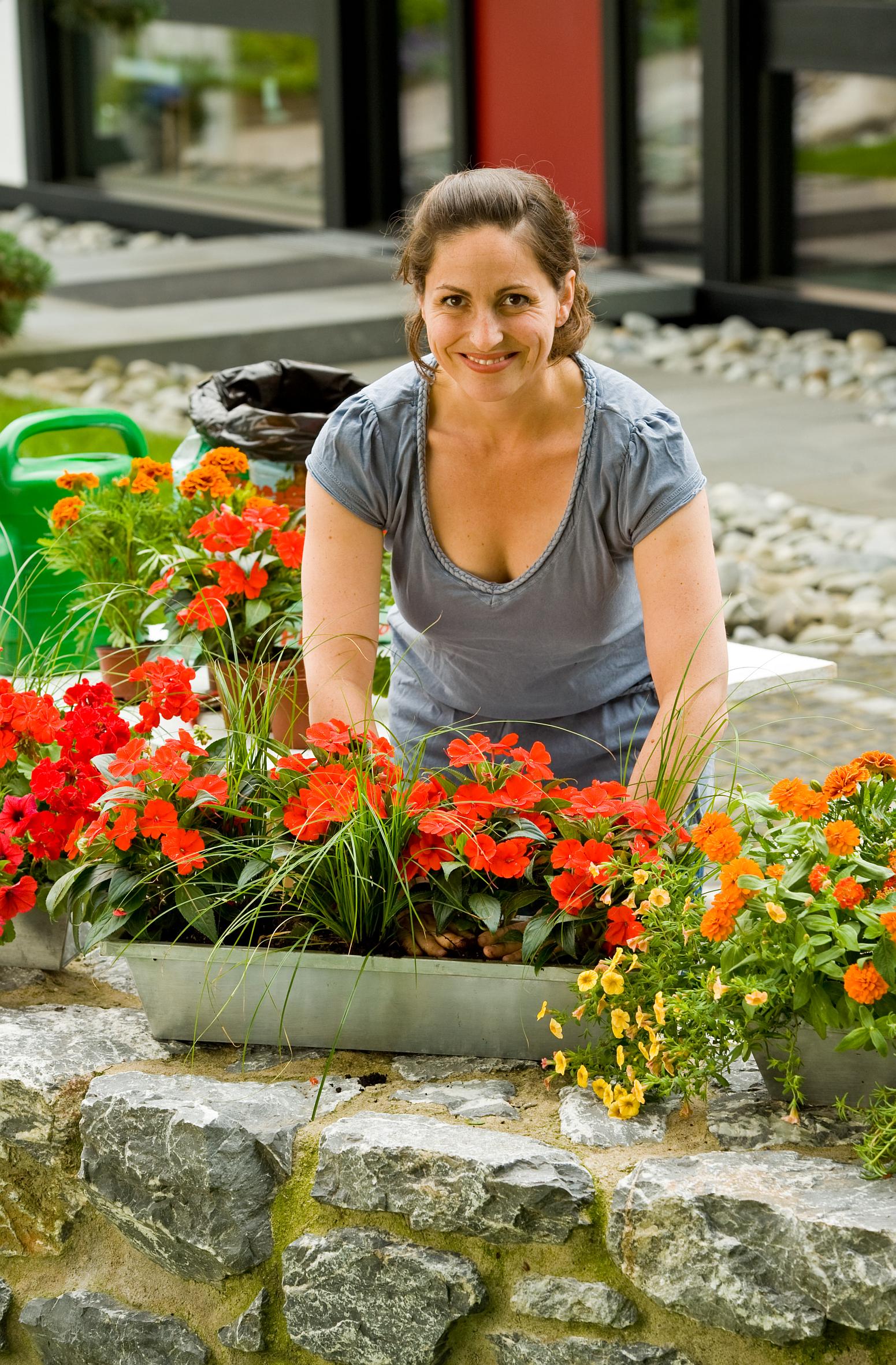Herzlich willkommen: Start in die Beet- und Balkonpflanzen-Saison