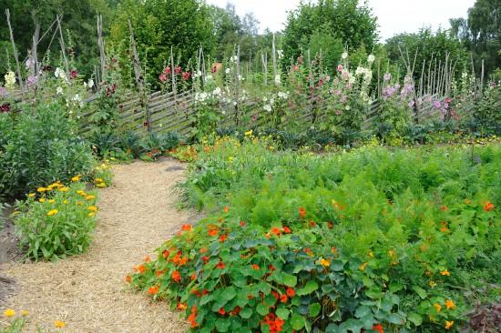 GMH_BDS_2011_13_02_Stauden und essbare Pflanzen für den Garten