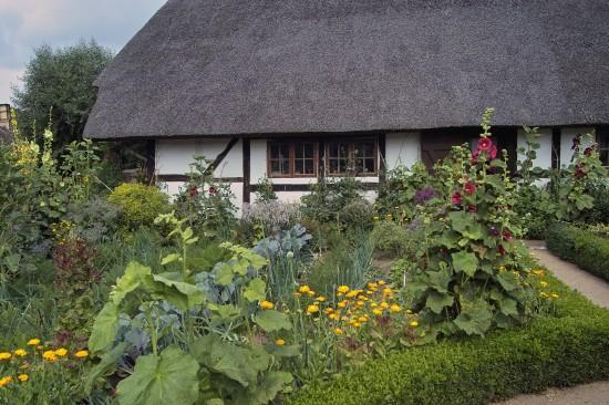 GMH_BDS_2011_13_09_Stauden und essbare Pflanzen für den Garten