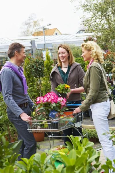 Gärtner begeistern für Balkon und Terrasse