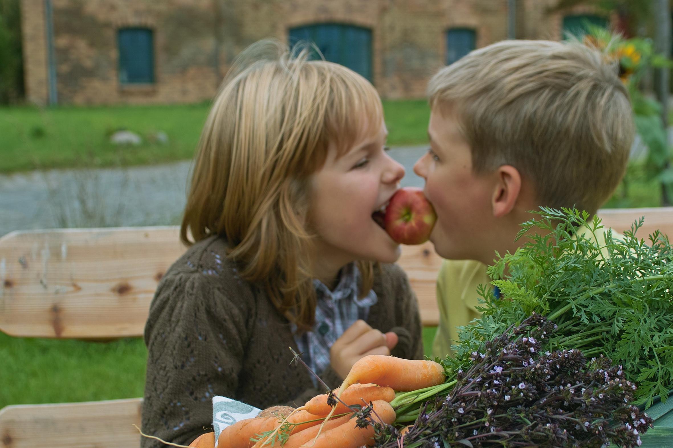 Gemüse und Obst – ohne Grünzeug geht es nicht