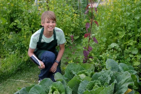 Genießer schätzen Gemüse aus der Region und dem eigenen Garten