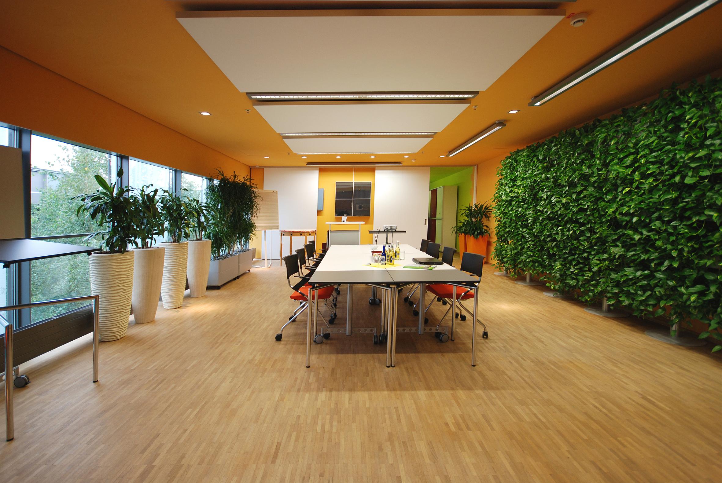 Die Zeichen stehen auf Grün – Pflanzen sorgen für neue Energie am Arbeitsplatz