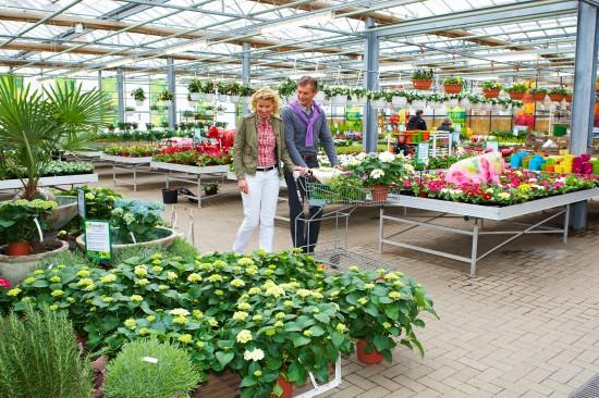 Premium Gärtnereien - ein Zeichen für Qualität