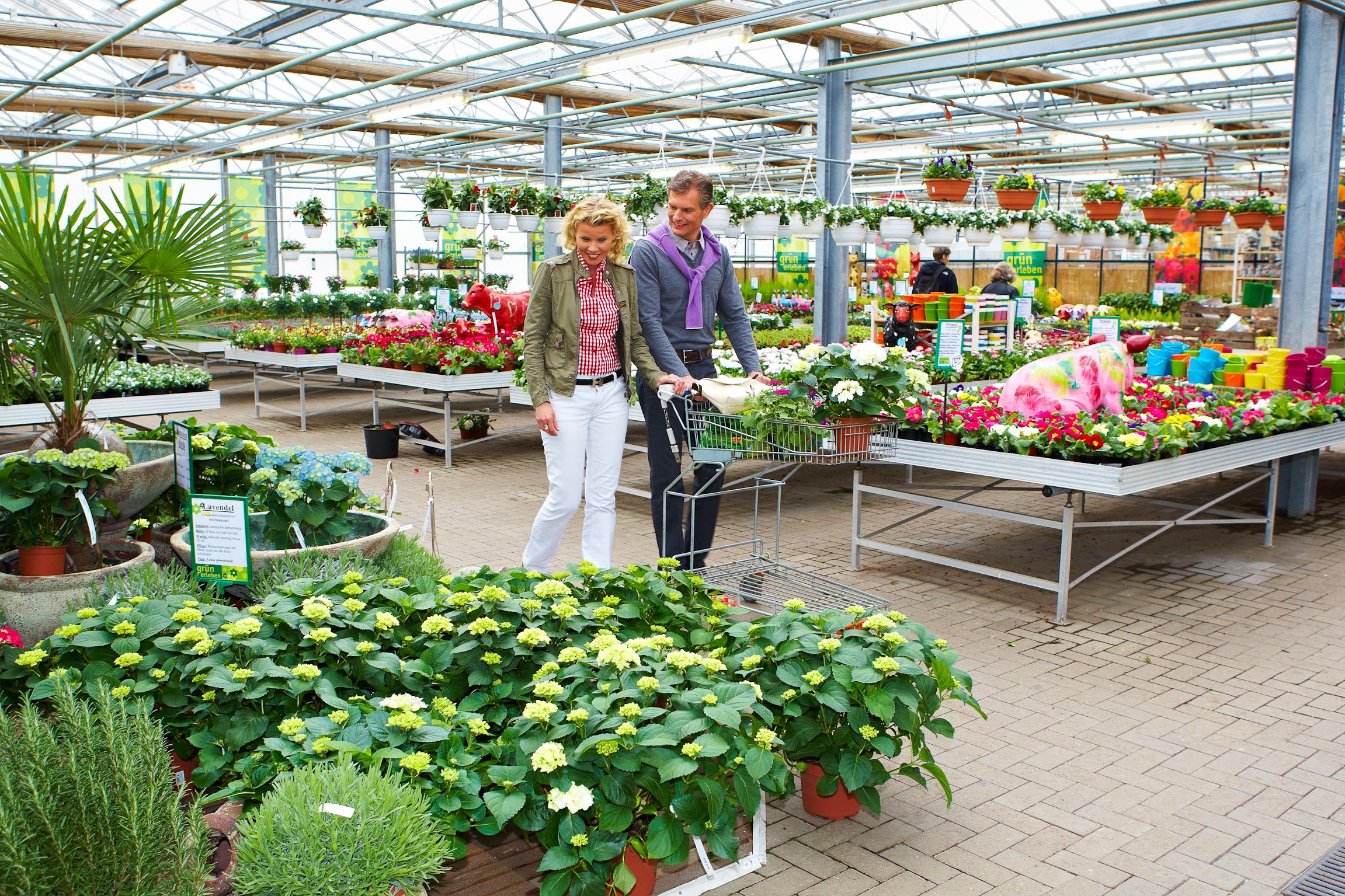 Premium Gärtnereien – ein Zeichen für Qualität