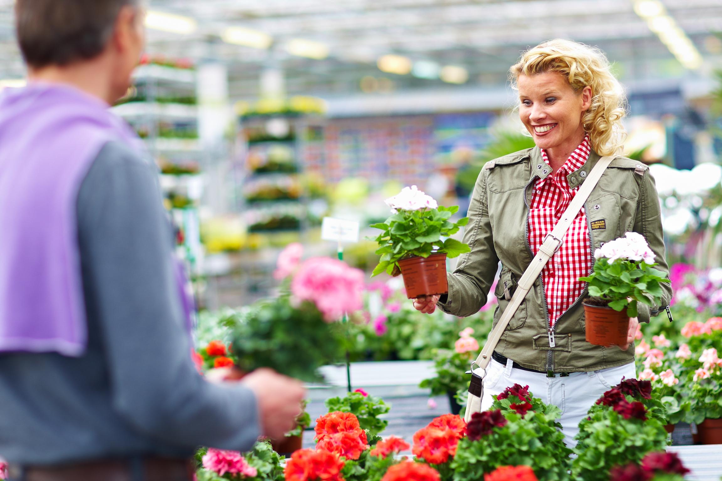 Farbenfroher Start in die Beet- und Balkonsaison