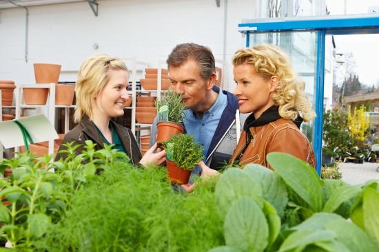 GMH_2012_19_01_Genuss pur: Kräuter und Gemüse kombiniert mit prachtvollen Blüten