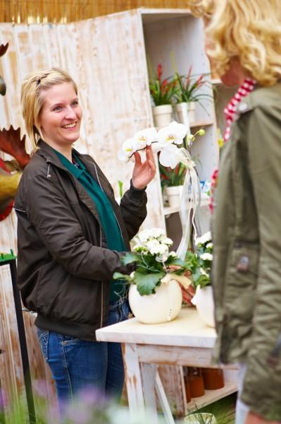 GMH_2012_29_04 Beruf Zierpflanzengärtner: Zauberkünstler mit grünem Daumen
