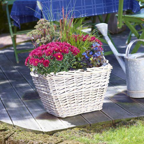 GMH_2012_34_03 Farbharmonie sorgt für ein stimmiges Bild bei der Herbstbepflanzung