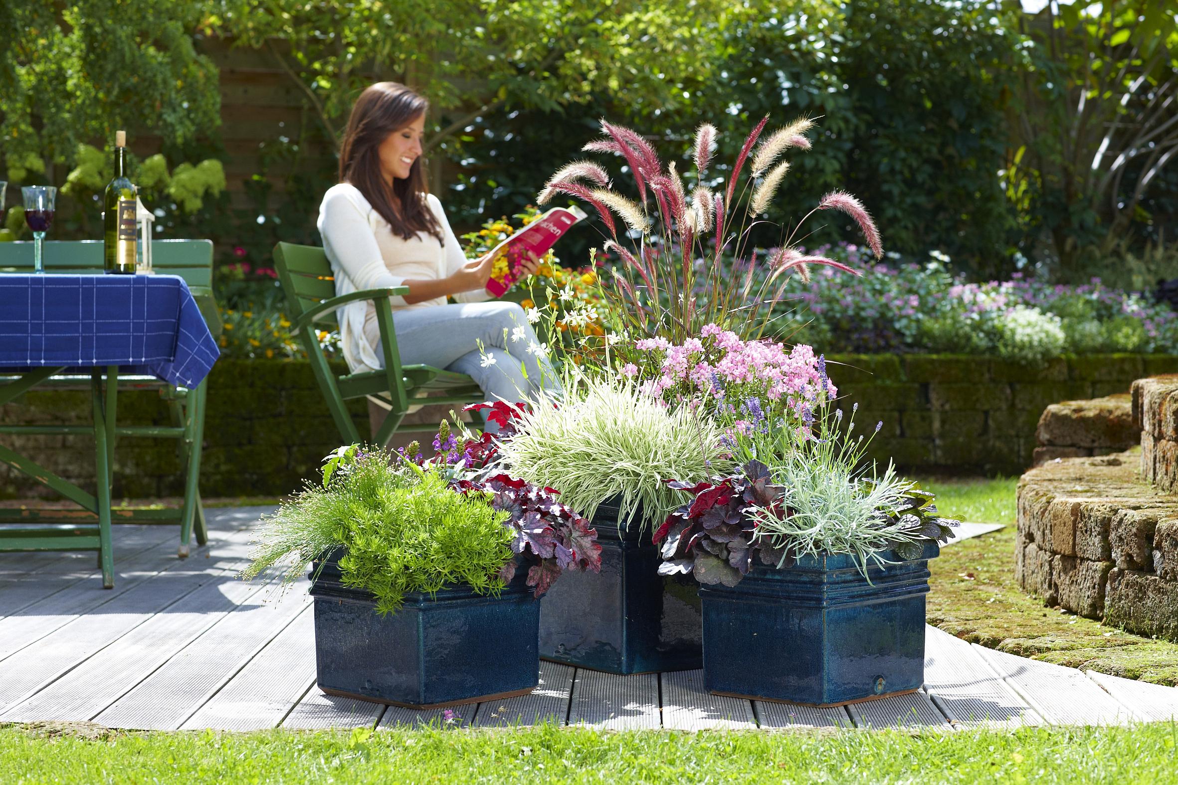 Bl ten bl tter und gr ser bieten reizvolles for Bepflanzung terrasse