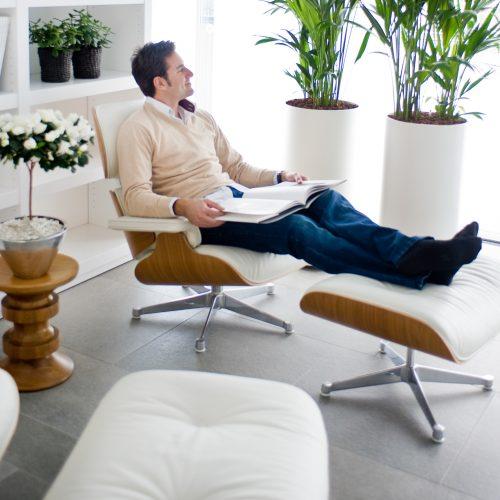 zimmerpflanzen seite 4 das gr ne medienhaus. Black Bedroom Furniture Sets. Home Design Ideas
