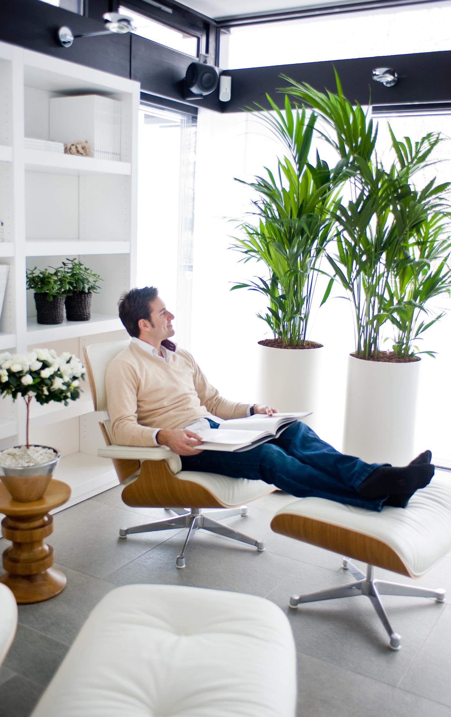 pflanzen ohne erde hydrokultur macht das leben einfacher das gr ne medienhaus. Black Bedroom Furniture Sets. Home Design Ideas