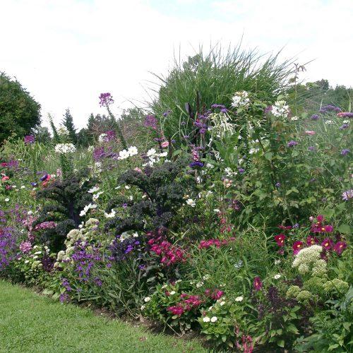 13_02 Jeden Sommer einen neuen Garten