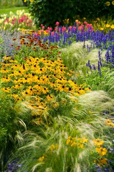 13_06 Jeden Sommer einen neuen Garten