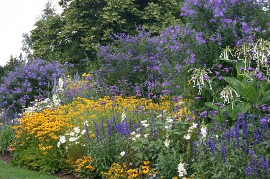 13_11 Jeden Sommer einen neuen Garten