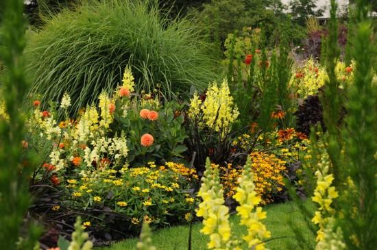 13_12 Jeden Sommer einen neuen Garten