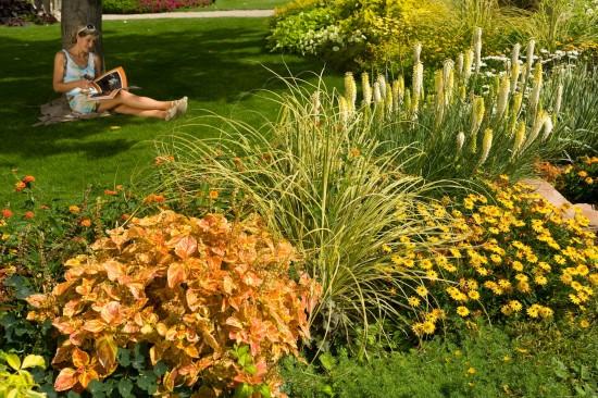 13_14 Jeden Sommer einen neuen Garten