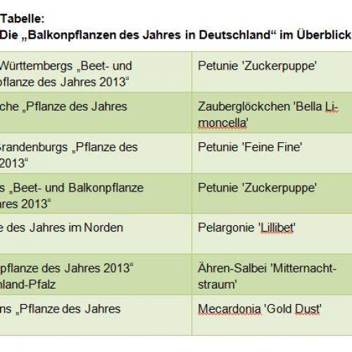 Tabelle_Balkonpflanze des Jahres 2013