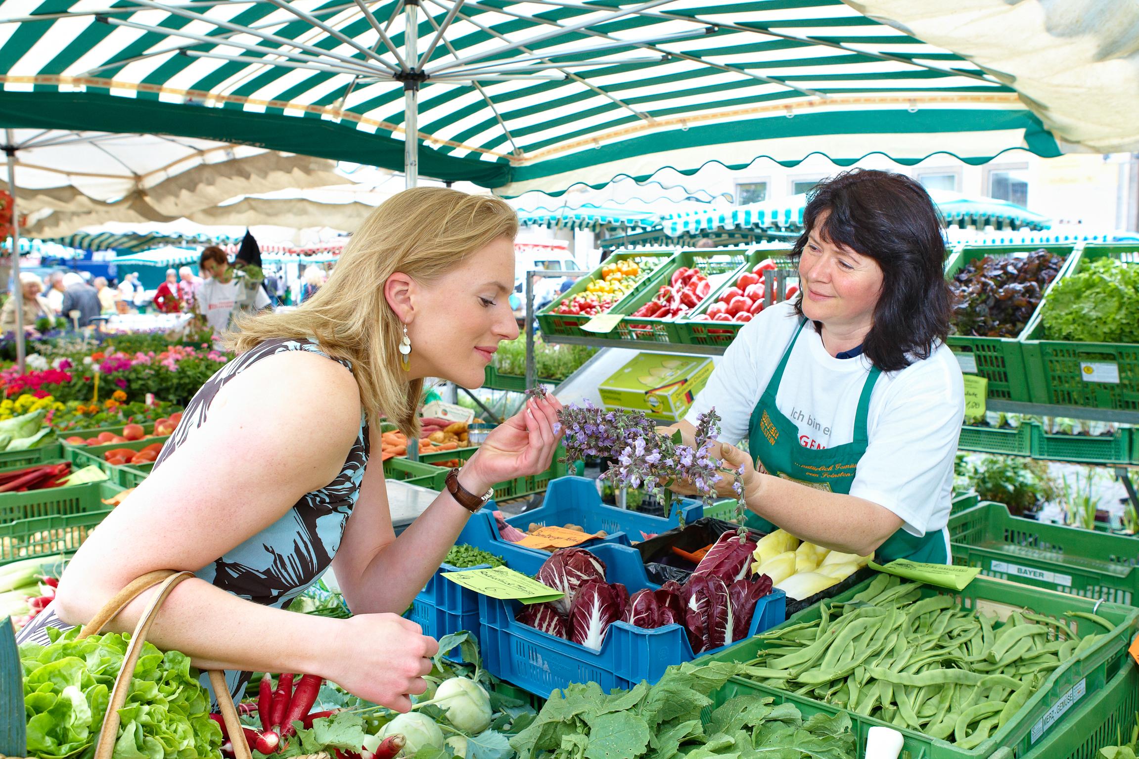 Winter ade – Vitamine willkommen: frische Salate und Kräuter aus der Region