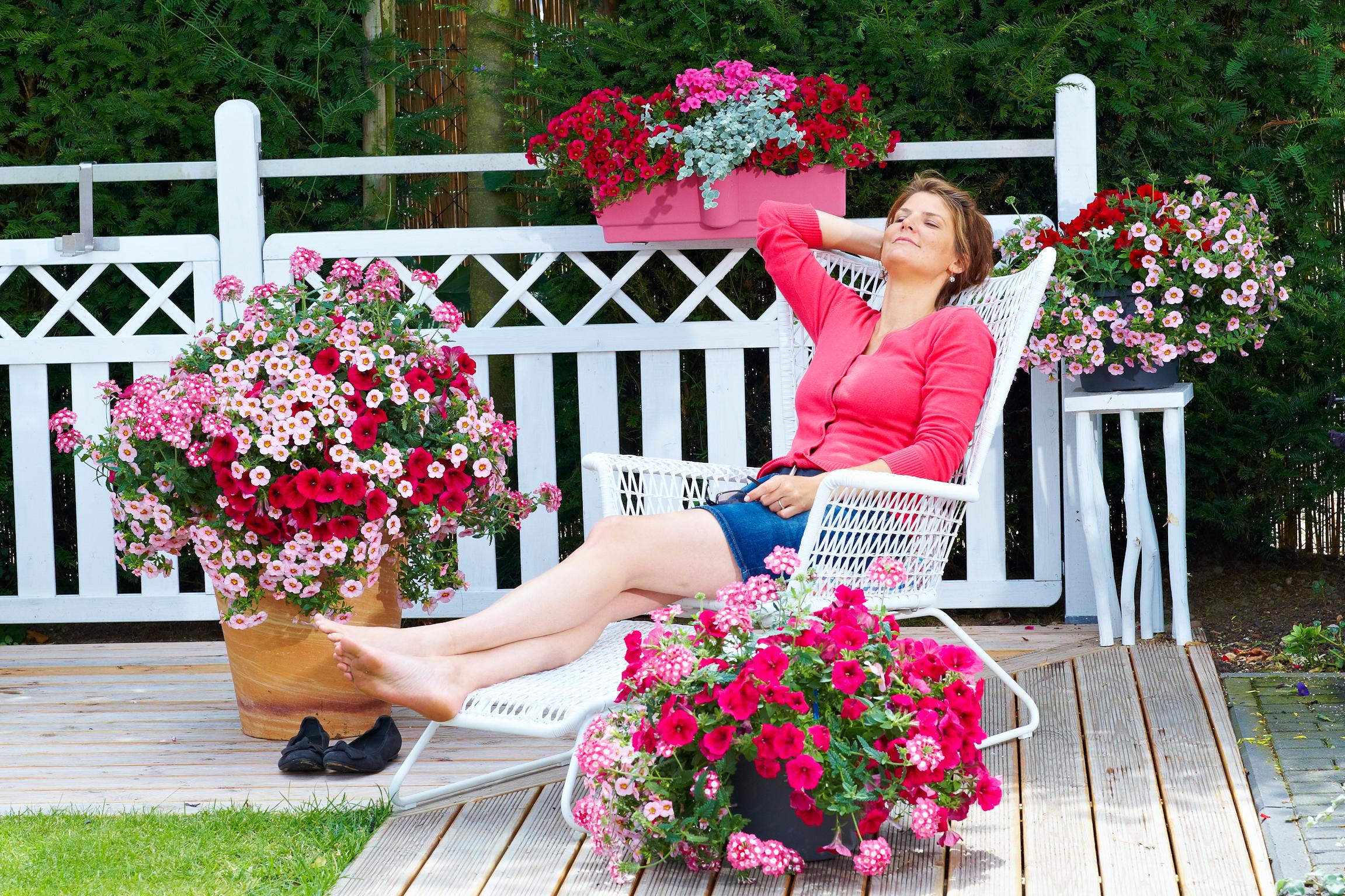 combipots farbenreiche oase auf balkon und terrasse. Black Bedroom Furniture Sets. Home Design Ideas