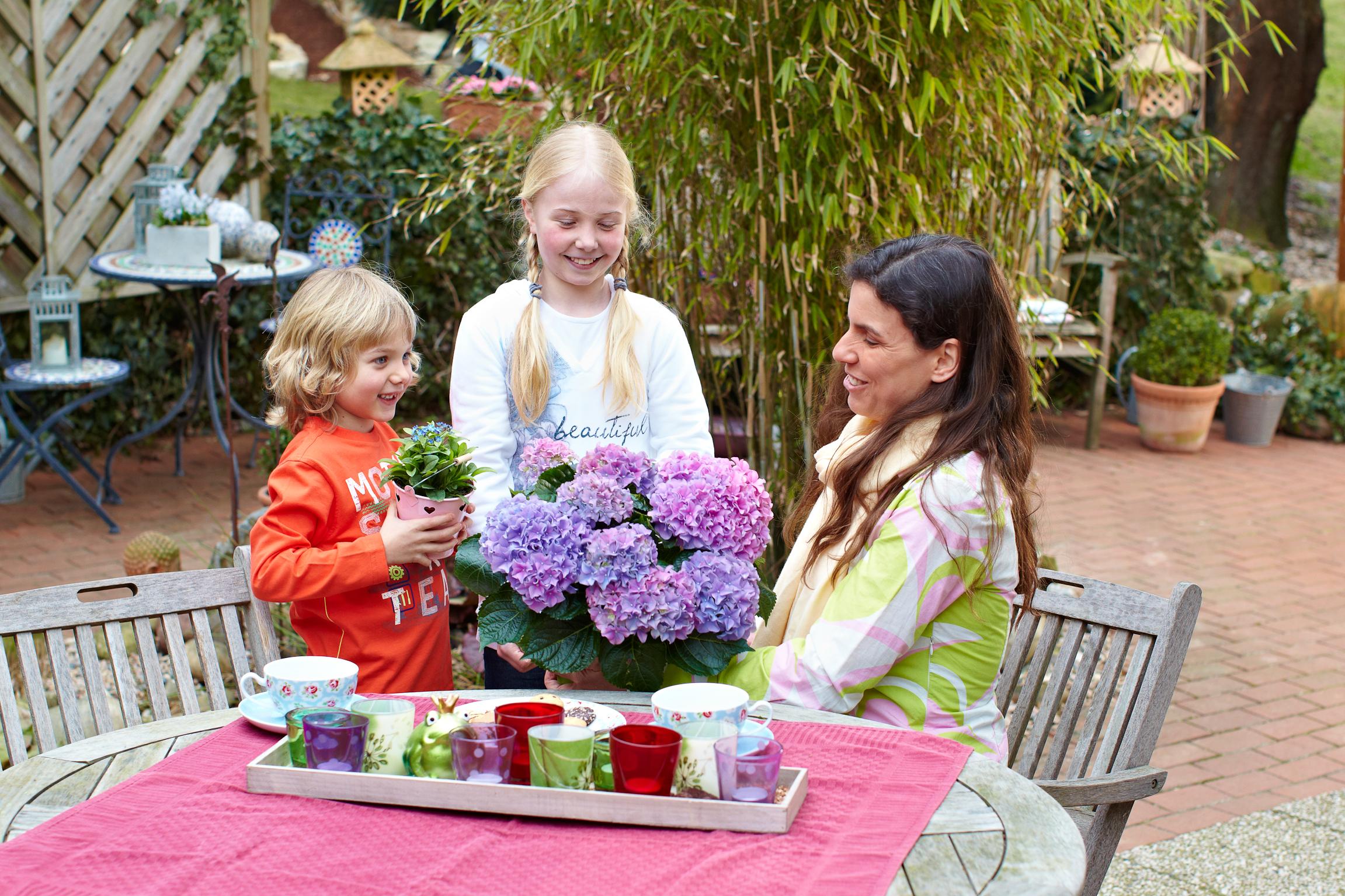 Zum Muttertag lassen sich Topfpflanzen in einer hübschen Schale kombinieren