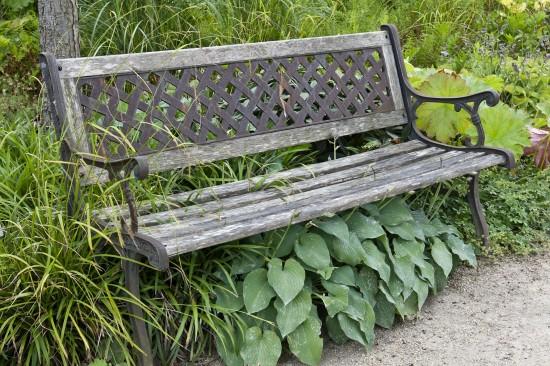 GMH_2013_23_14 Muse-Stunden im Garten - Sitzplätze mit Stauden