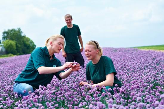 Gärtner -– ein Beruf für alle Typen