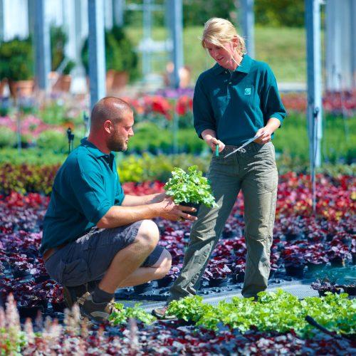 Gärtner –- Ein vielseitiger Beruf mit Zukunft