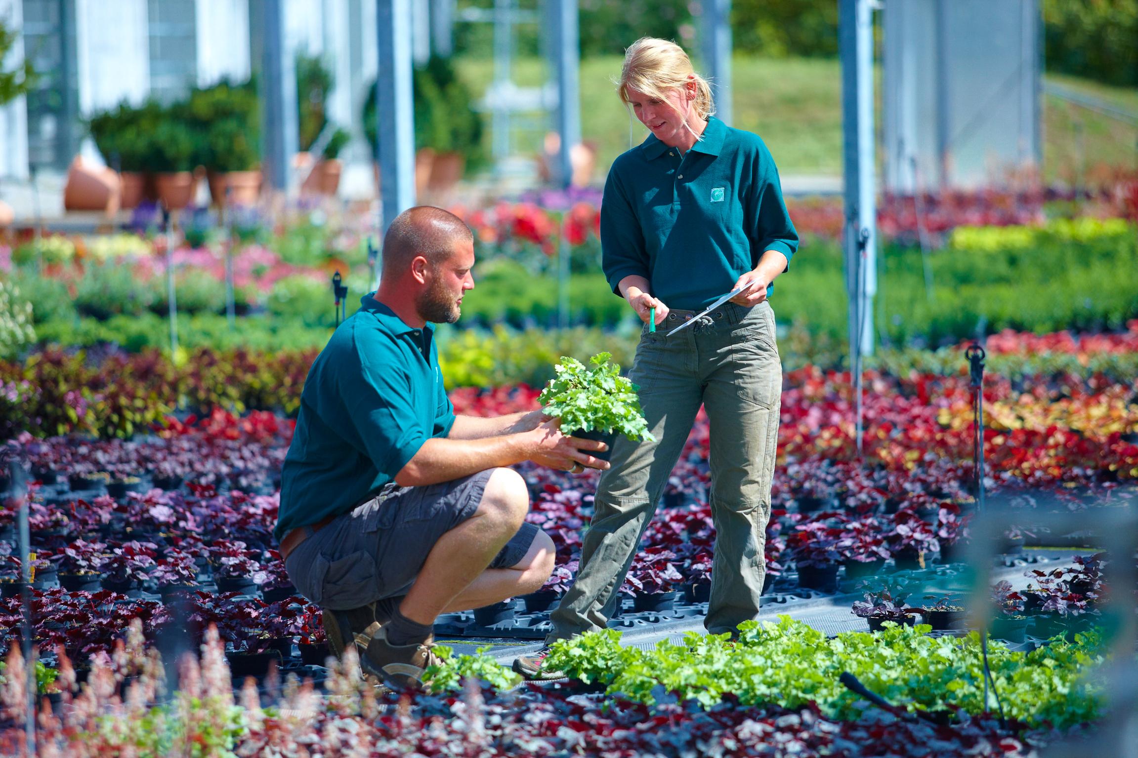 Gärtner – Ein vielseitiger Beruf mit Zukunft