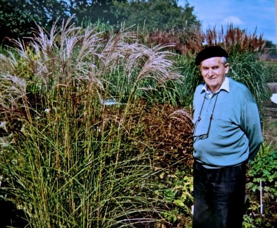 GMH_2013_34_06 Der Mensch zeigt sich im Garten - Vor 100 Jahren wurde der geniale Staudenzüchter und Menschenfreund Ernst Pagels geboren