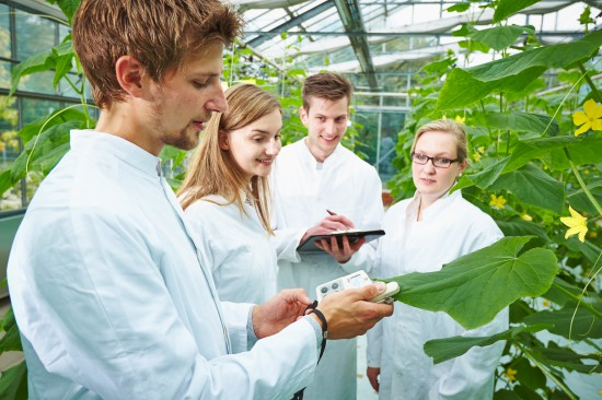 Gartenbau –- ein praxisnahes Studium mit Perspektiven