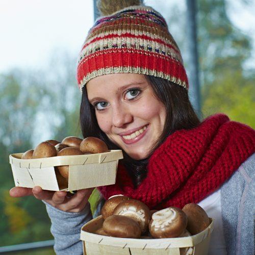 Pilze- Vitamin D-Lieferanten in dunkler Jahreszeit