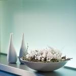 Stimmungsmacher: Zimmerpflanzen mit leuchtenden Blüten