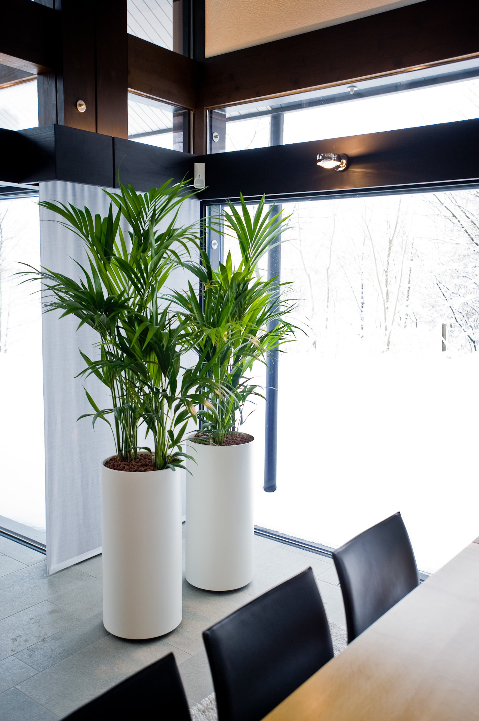 So werden Pflanzen zum Designobjekt