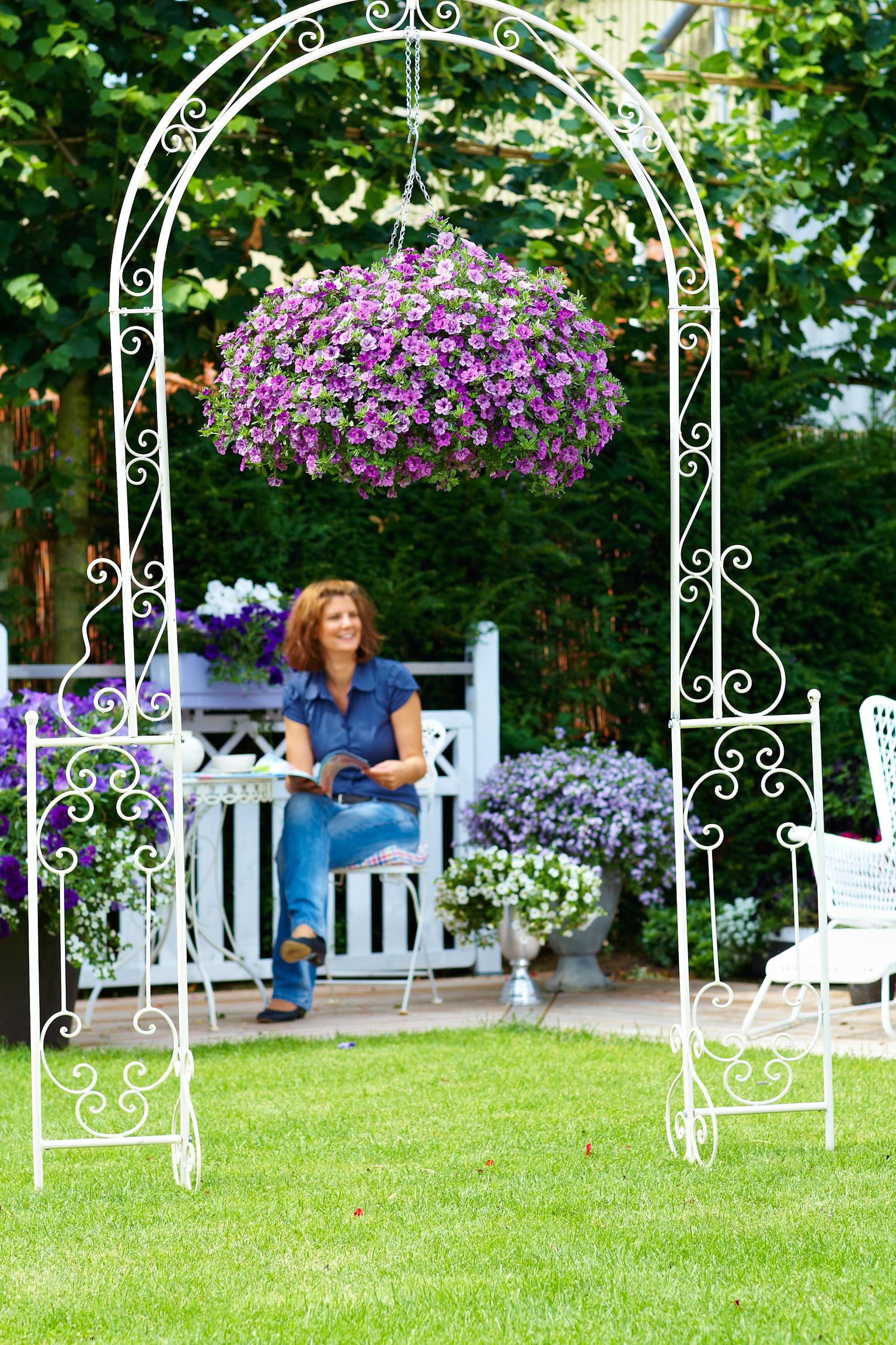 Im siebten Himmel: Blumenampeln und Hanging Baskets schaffen zusätzlichen Platz für Blüten