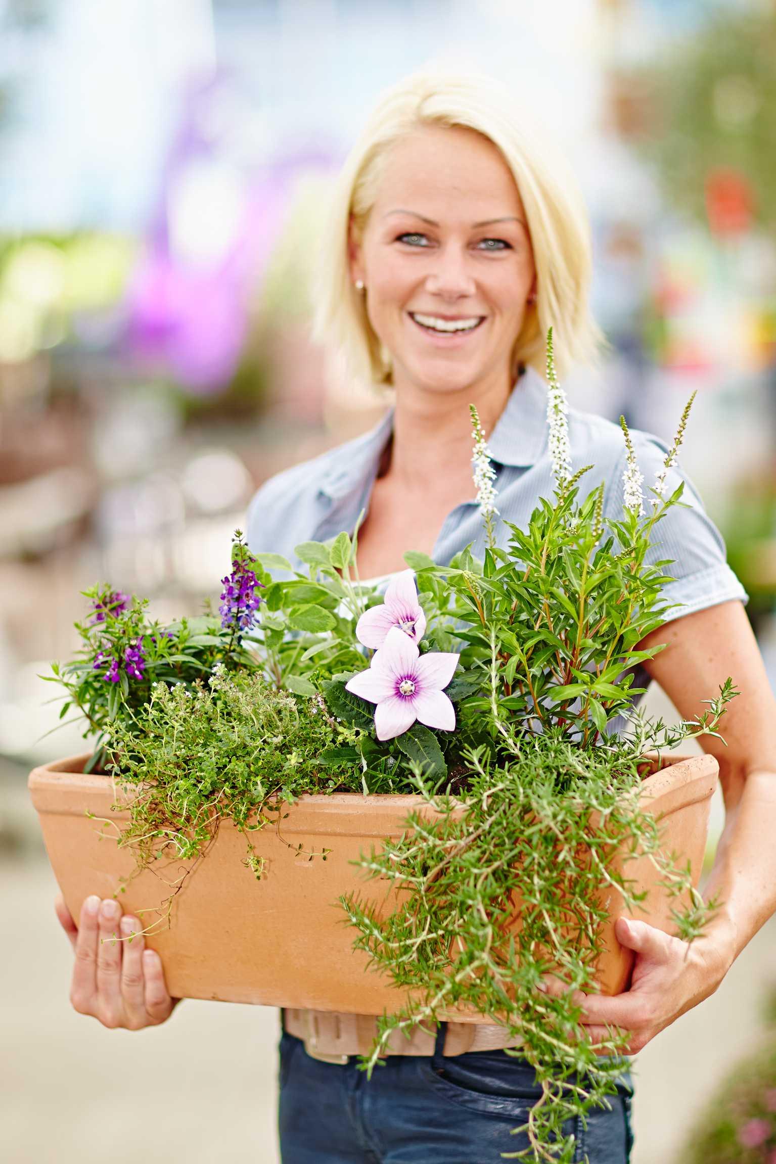 Kräuter kombiniert mit Beet- und Balkonpflanzen
