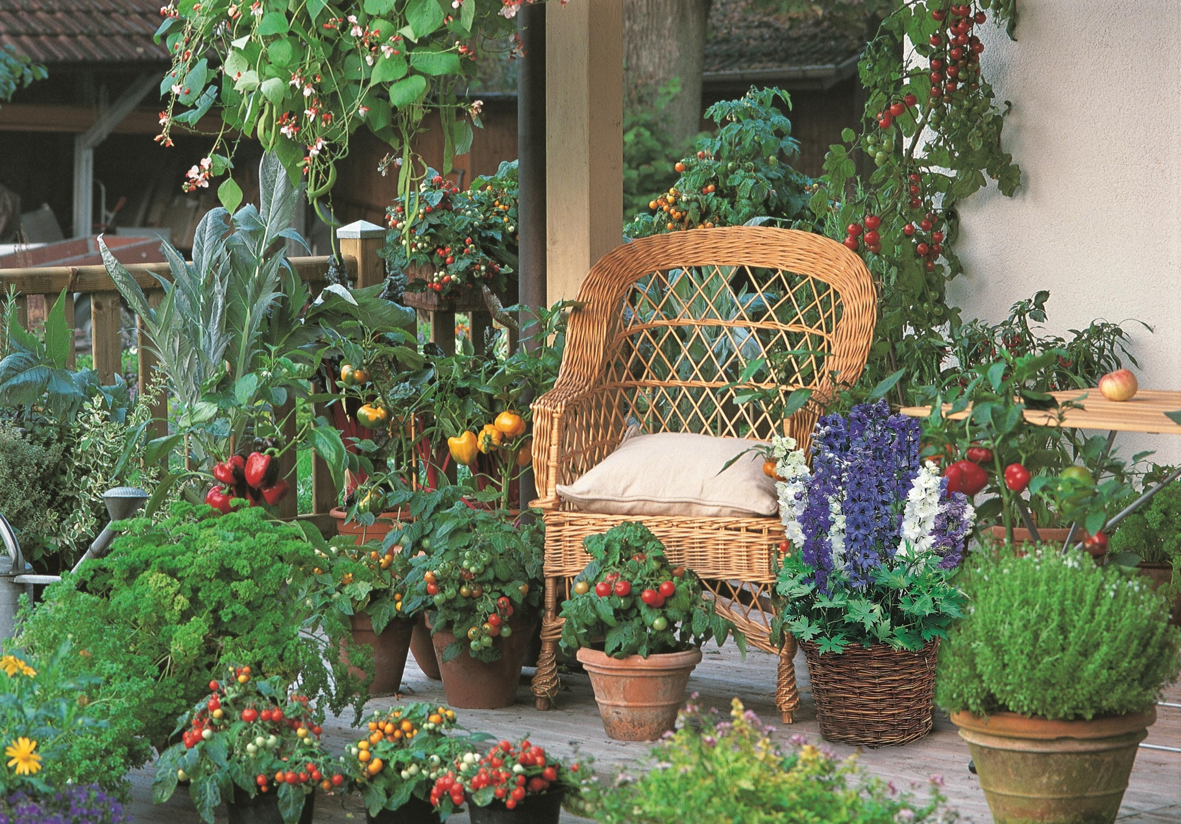 Naschen erwünscht: Obst und Gemüse passen zu Beet- und Balkonpflanzen