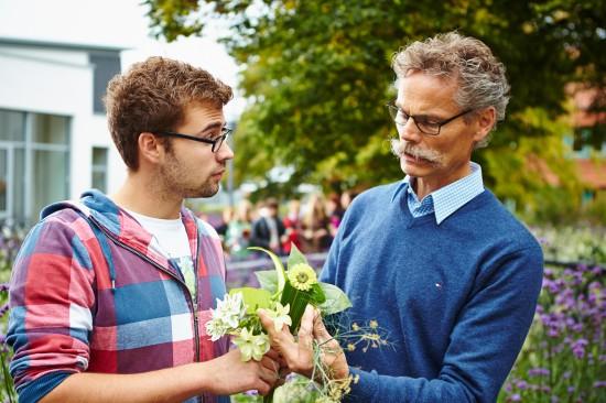 Gärtner – die grünen Umweltschützer in einem modernen Beruf