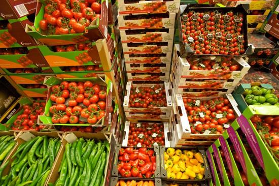 10 Jahre Frischezentrum Frankfurt – moderner Marktplatz für mehr als Obst und Gemüse