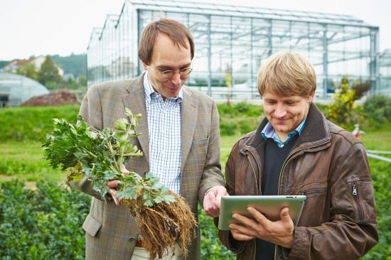 Gärtner - ein facettenreicher Beruf, der zufrieden macht