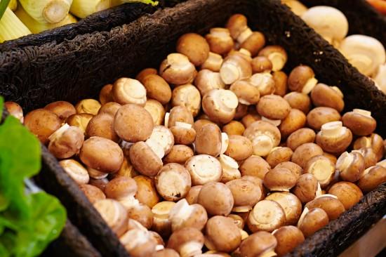 Gesunde Pilze dank Feuchtigkeit und Dampfsterilisation